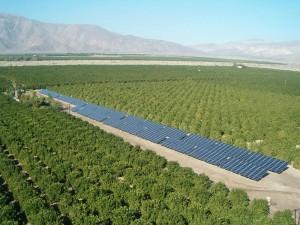 Solar Water Pumps - Drip irrigation using solar pumps